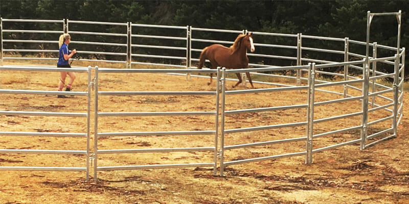 Corral Fence