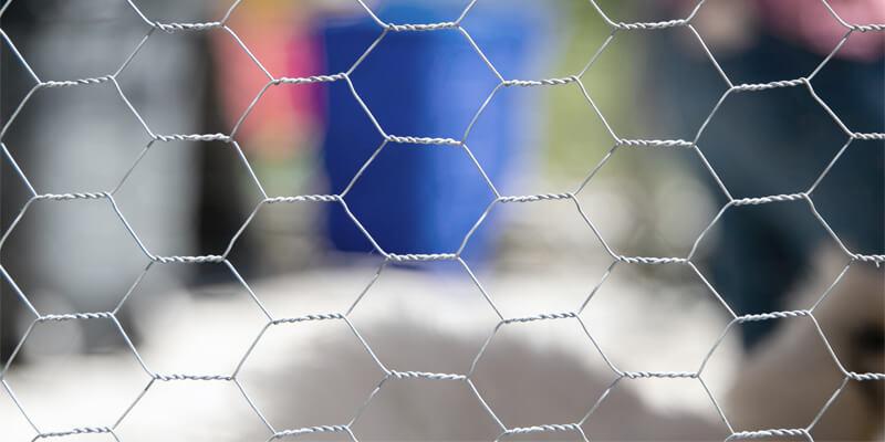 Hexagonal Mesh Chicken Wire